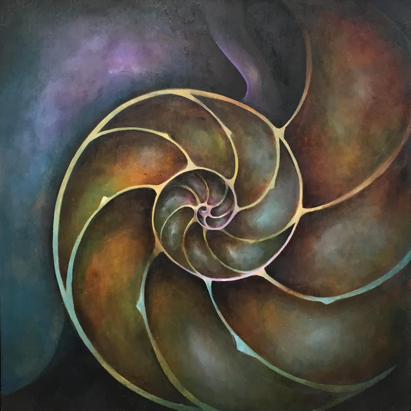 Nautilus Spiral (Nautilidae)