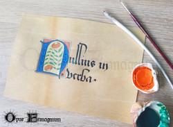 """Proverbe """"Nullius in verba"""""""