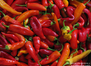 Does Spicy Food Really Cause Ulcers?