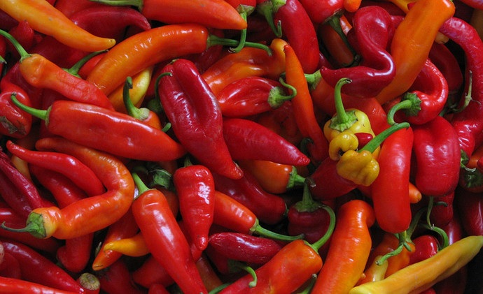 Hot & Spicy Collection