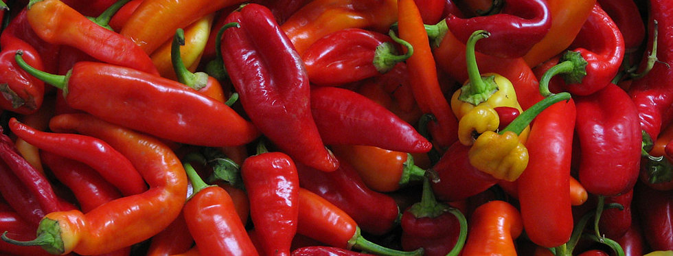 Red chillies (pack of 4)