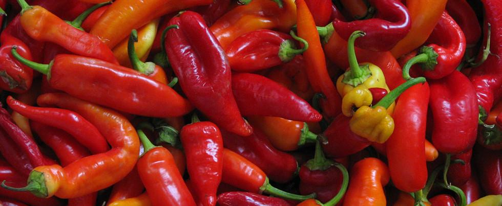 How to make Biltong Chilli Bites