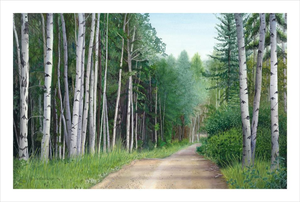 Road to Big Meadow Lake