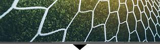 SoccerNet.png