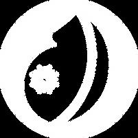 HebammeRomana_Logo_weiss.png