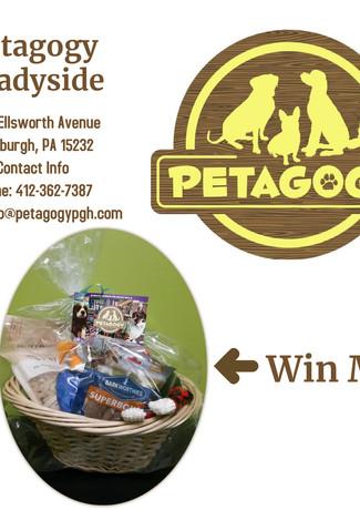 Copy of Petagogy Shadyside basket.jpg