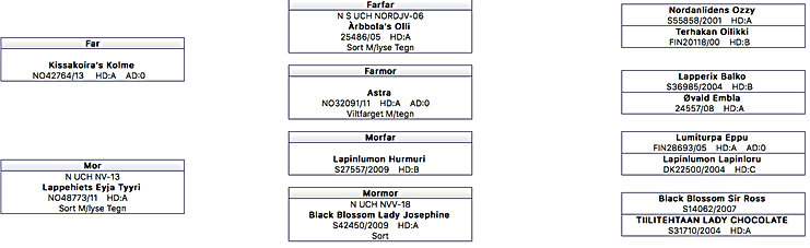Skjermbilde 2019-08-17 08.54.54.png