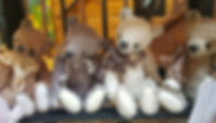 aviary-image-1574855242861.jpeg