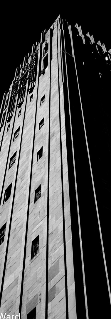 Burton Tower Noir.jpg