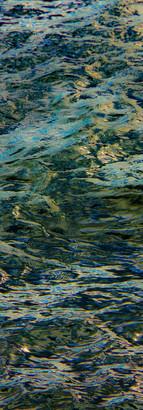 Tidal Basin II.jpg