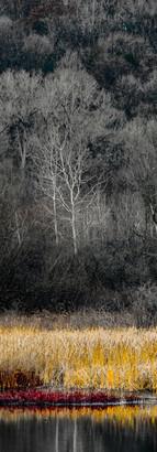 Huron River II Clear.jpg
