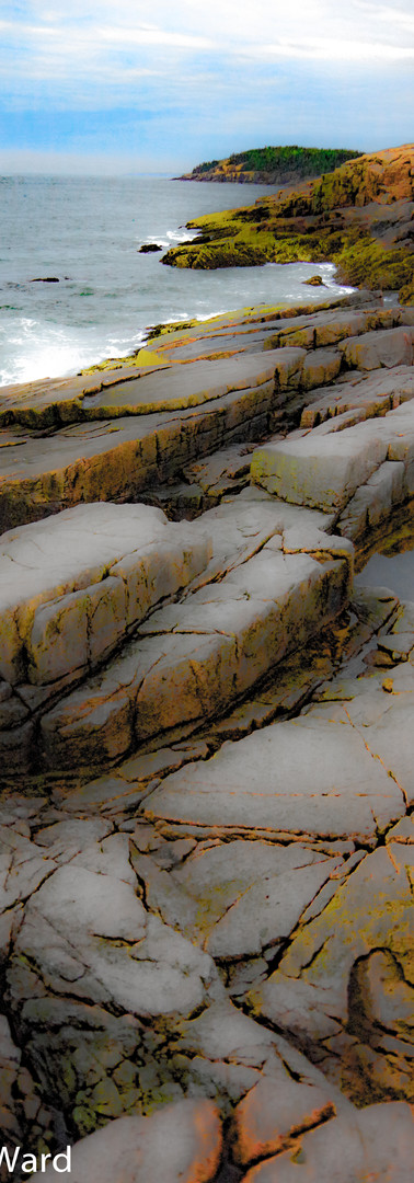 Acadia Shore.jpg