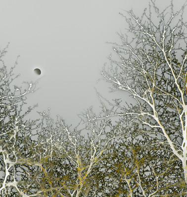 Reverse Moon