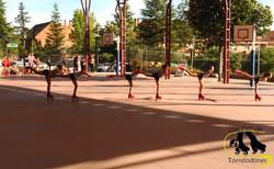 club patinaje Torrelodones mimos