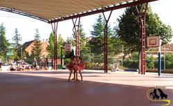 club patinaje Torrelodones apertura
