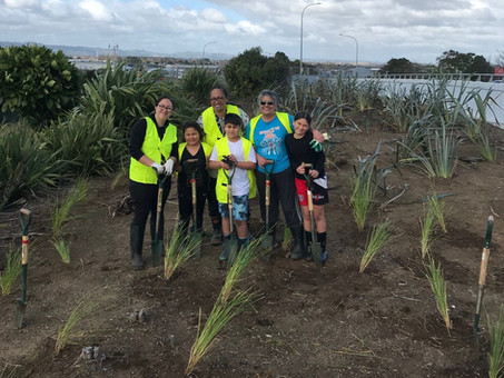 Clayton Park Primary School planting day