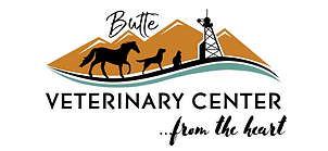 BVC NEW LOGO - From the Heart.png