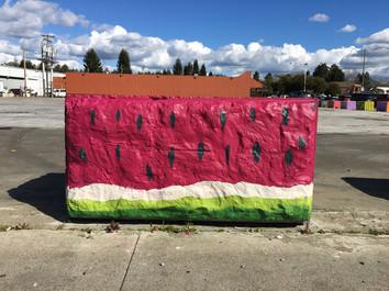 Watermelon Concrete Barrier