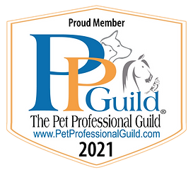 PPG Member Badge 2021_white with url.png