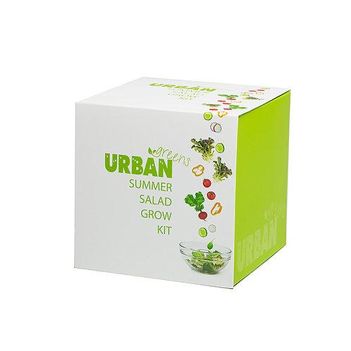 Urban Greens Summer salad Grow kit gift box