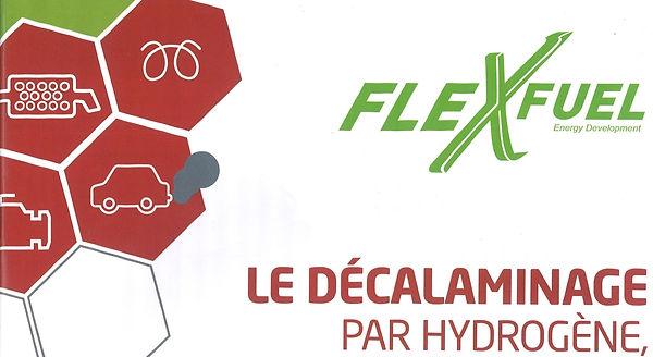 FLEXFUEL.jpg