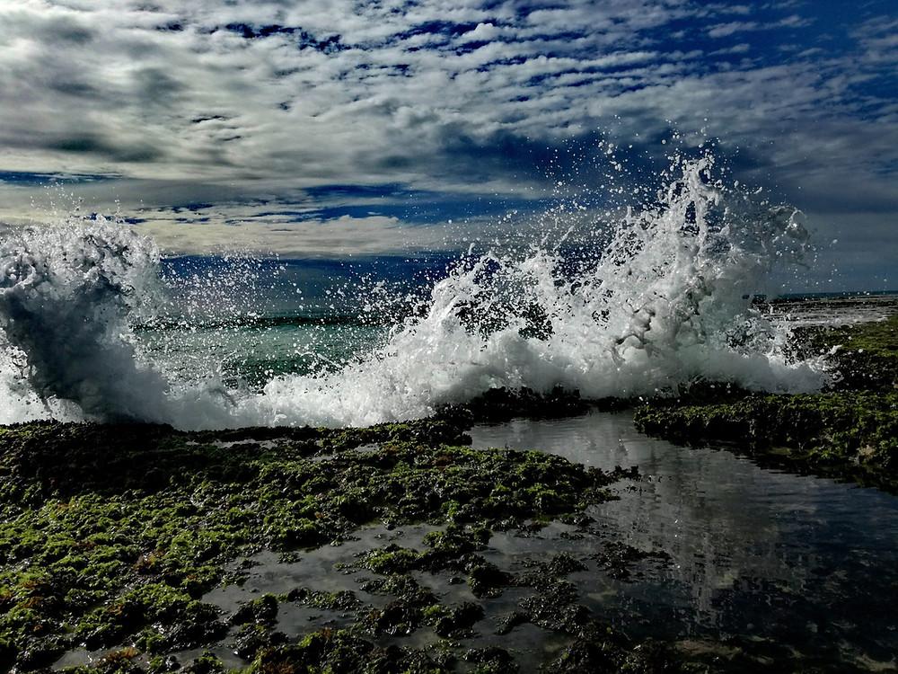 Seawater Precipitation, source to produce magnesium hydroxide