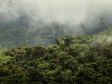 Zelená hora a létající drahokamy