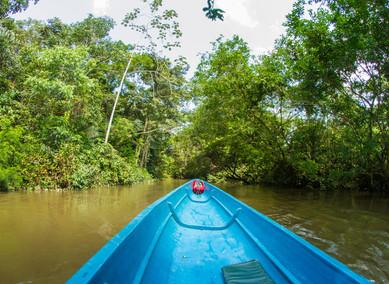 Rovníkovou Amazonií