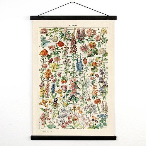 Vintage Botanical Canvas Print