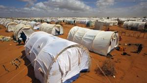 Kenyan closure of Dadaab refugee camp blocked by high court