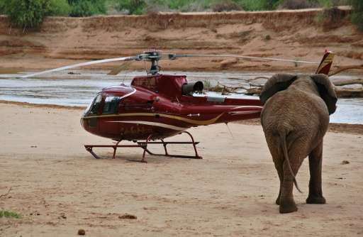 In the remote wilds of northern Kenya's Samburu reserve, the latest technology from US internet giant Google creates three-dimensional maps using data from satellite tracking elephant collars