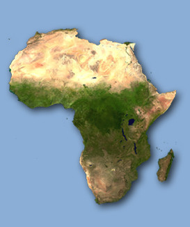 Political Transformation and Security and Stability in West Africa's Guinea