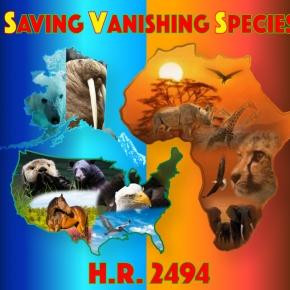 """US CONGRESSIONAL BILL HR-2494, """"GLOBAL ANTI-POACHING ACT"""" NEARS 50% MARK FOR CO-SPONSORS"""