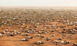 Dadaab refugee camp closure would risk 350,000 Somali lives, warns Amnesty