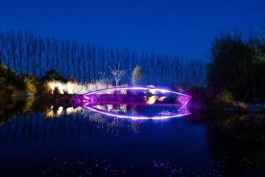 Bridge Light Show