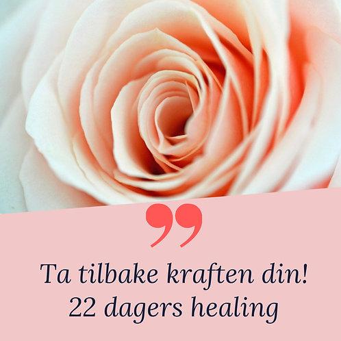22 dagers healing