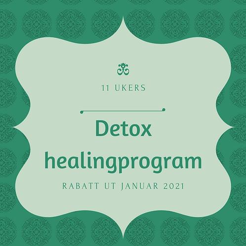 Detox Healing program i 11 uker