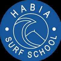 habia%20surf%20school%20GOOD_edited.png