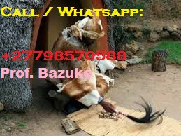 ''+27798570588''  Best Traditional Healer, Lost Love Spells Caster, Sangoma, Psychic in Zambia, Colo