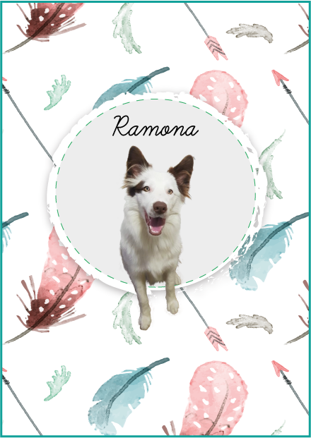 Estampa Ramona
