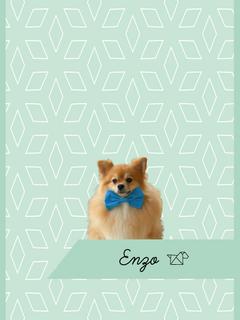 Estampa Enzo