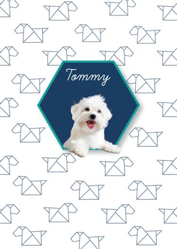Estampa Tommy