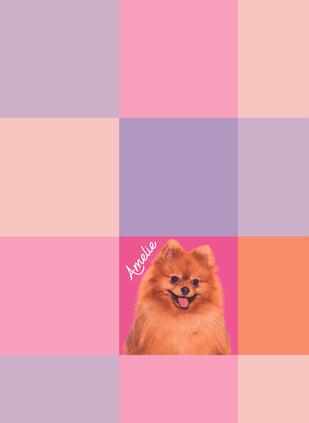 2. Grid-01.jpg