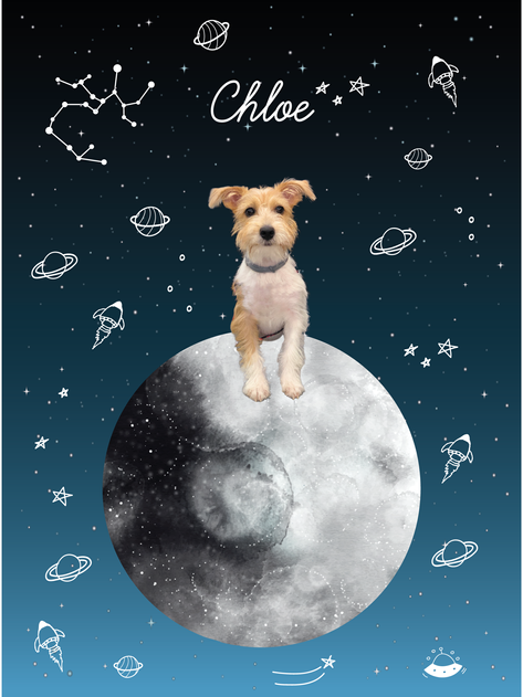 Estampa Chloe