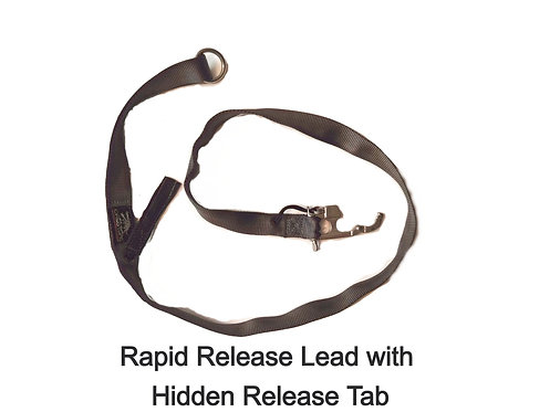 Rapid Release with Hidden Pull Tab