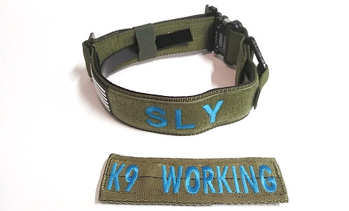 Hidden E-Collar with Velcro ID Patch -- Works with your E-Collar unit