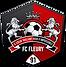 Logo-léger-FCF91.png