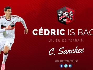 N2. Cédric Sanches est de retour !