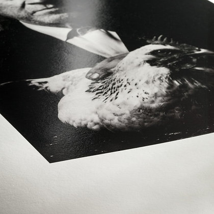 Tirages papier Hahnemühle Fine Art Baryta