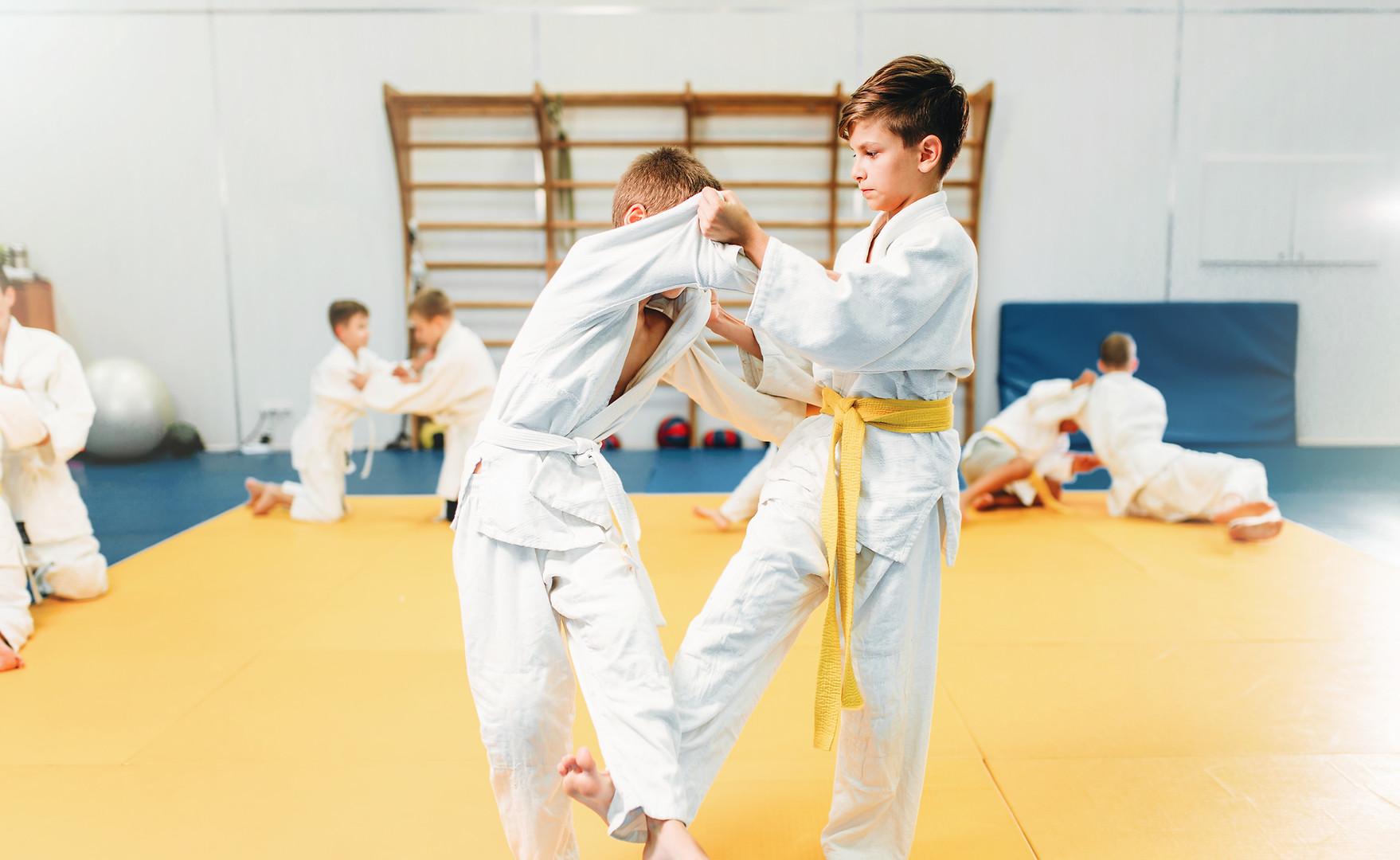 Ayaran Karate